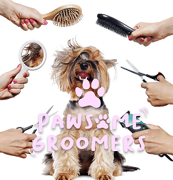 PAWSOME dog groomers Weymouth for healthier, happier pets
